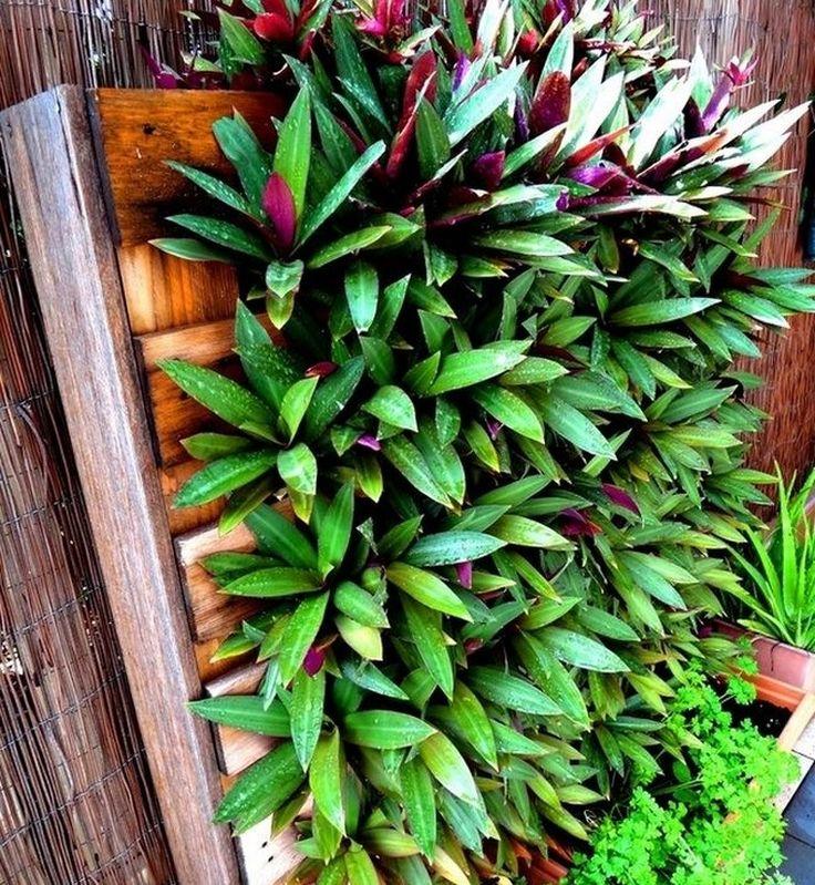 5348 best le jardin se partage images on pinterest - Palette jardiniere verticale ...