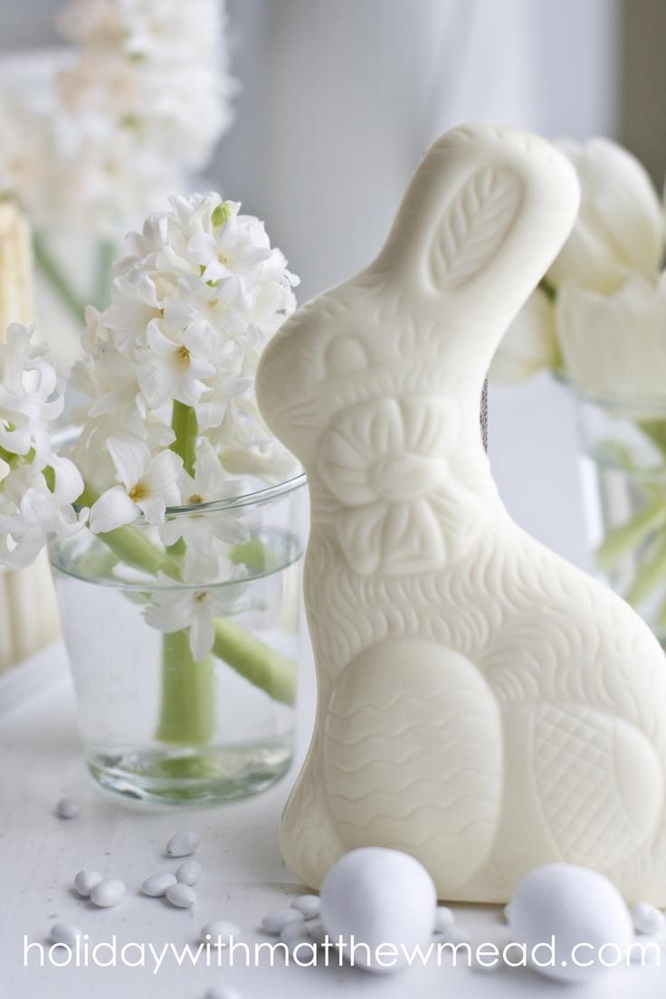 A white bunny