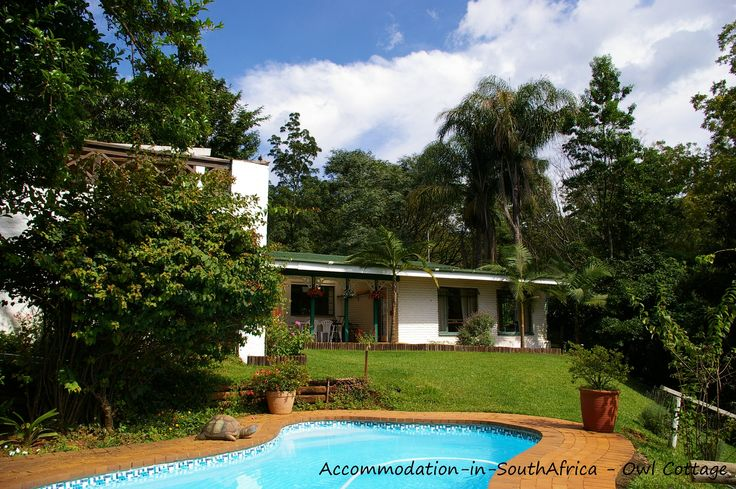 Magoebaskloof Accommodation. Accommodation at Owl Cottage. Pool at Owl Cottage. Self catering accommodation Magoebaskloof. Magoebaskloof self catering accommodation.