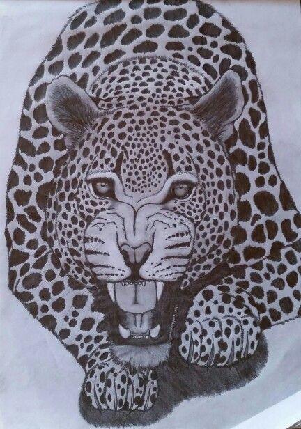OMG Leopard