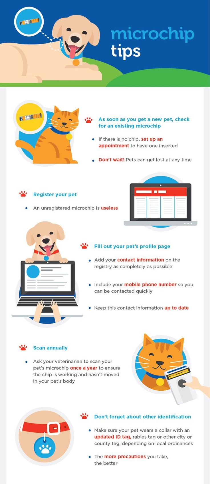 217 Best Images About Infographics Pet Facts On