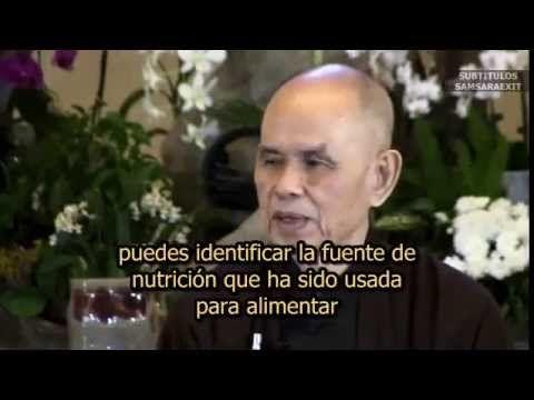 Thich Nhat Hanh.El Sendero de la Felicidad.SubEsp