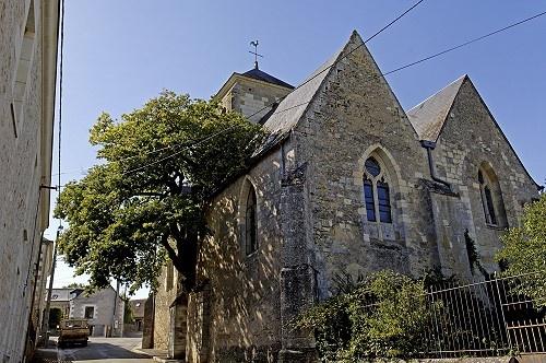 Eglise de Cheillé. J'adore cette église avec son magnifique arbre !!!
