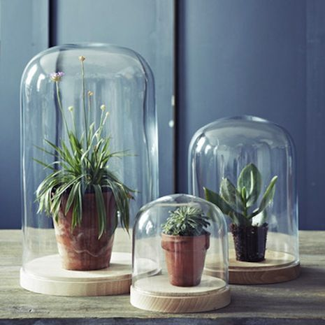 Beautifully styled poetic home accessories from Rowen and Wren