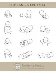 newborn-poses-session-planner                                                                                                                                                      Más