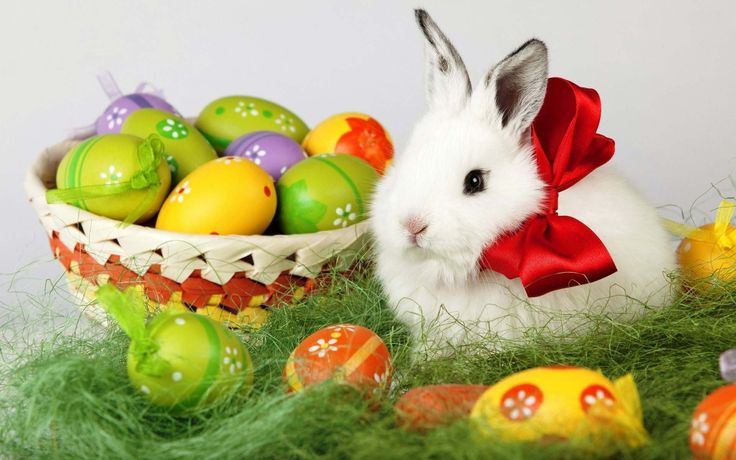 ** Happy Easter To All My Followers. May your day be full of happiness and fun!