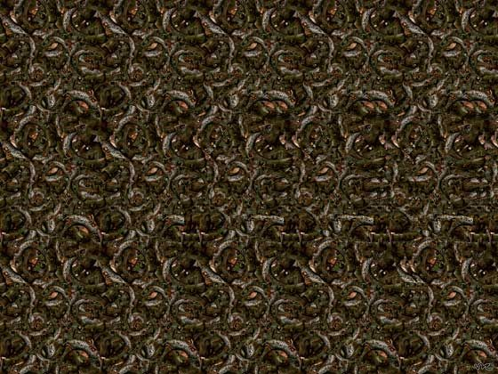 """""""Horse Illusion - 3D Stereogram"""" -- I absolutely HATE these things where you're supposed to stare intently until you see the hidden image. I can never, ever see them.  Every time I come close, my brain snaps my eyes back into focus."""