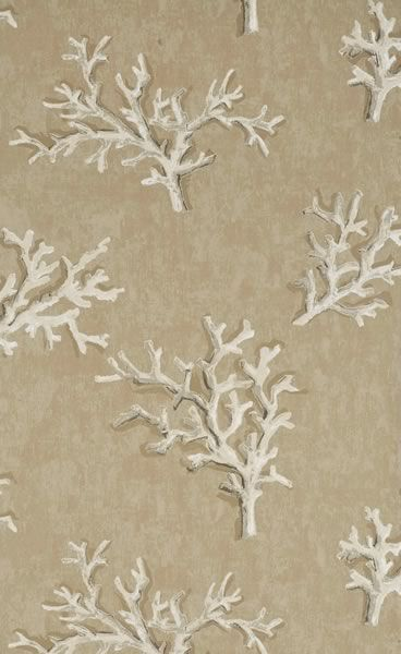 coral wallpaper inspiration//white on brown