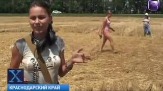 Х версии Восемь кругов за 1 ну ночь круги на полях Кубани New crop circles in Kuban