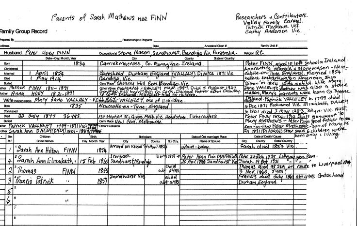 Peter Hoey Finn`s family tree chart, father of Sarah Mathews nee Finn who married Peter Mathews, son of Thomas & Mary Mathews. Peter Finn, Monumental mason, built Mary Mathews monument at Louth, NSW.