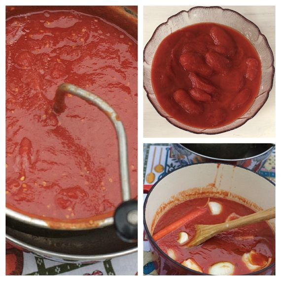 My Italian Grandmother's Basic Homemade Tomato Sauce