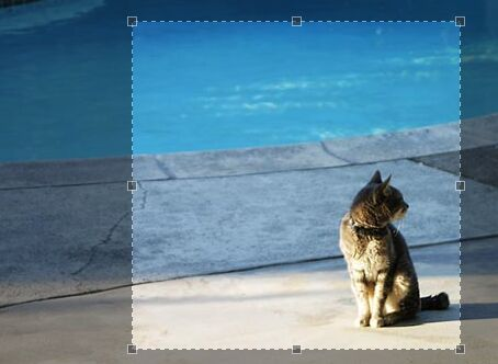 Jcrop is a robust #jQuery image cropper plugin that provides a cross-browser, cross-platform, highly customizable image cropping tool for your web application.