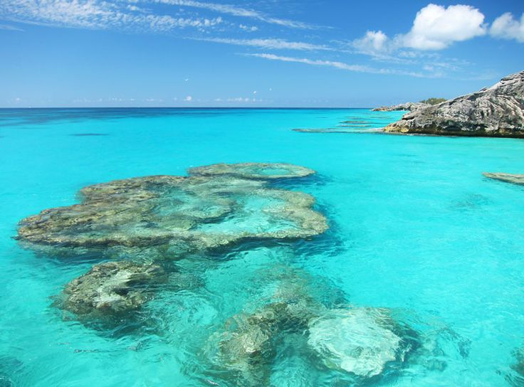 Recommended Bermuda Snorkeling Beaches Amp Boat Tours The