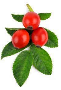 rose hip jelly | Preserving | Pinterest