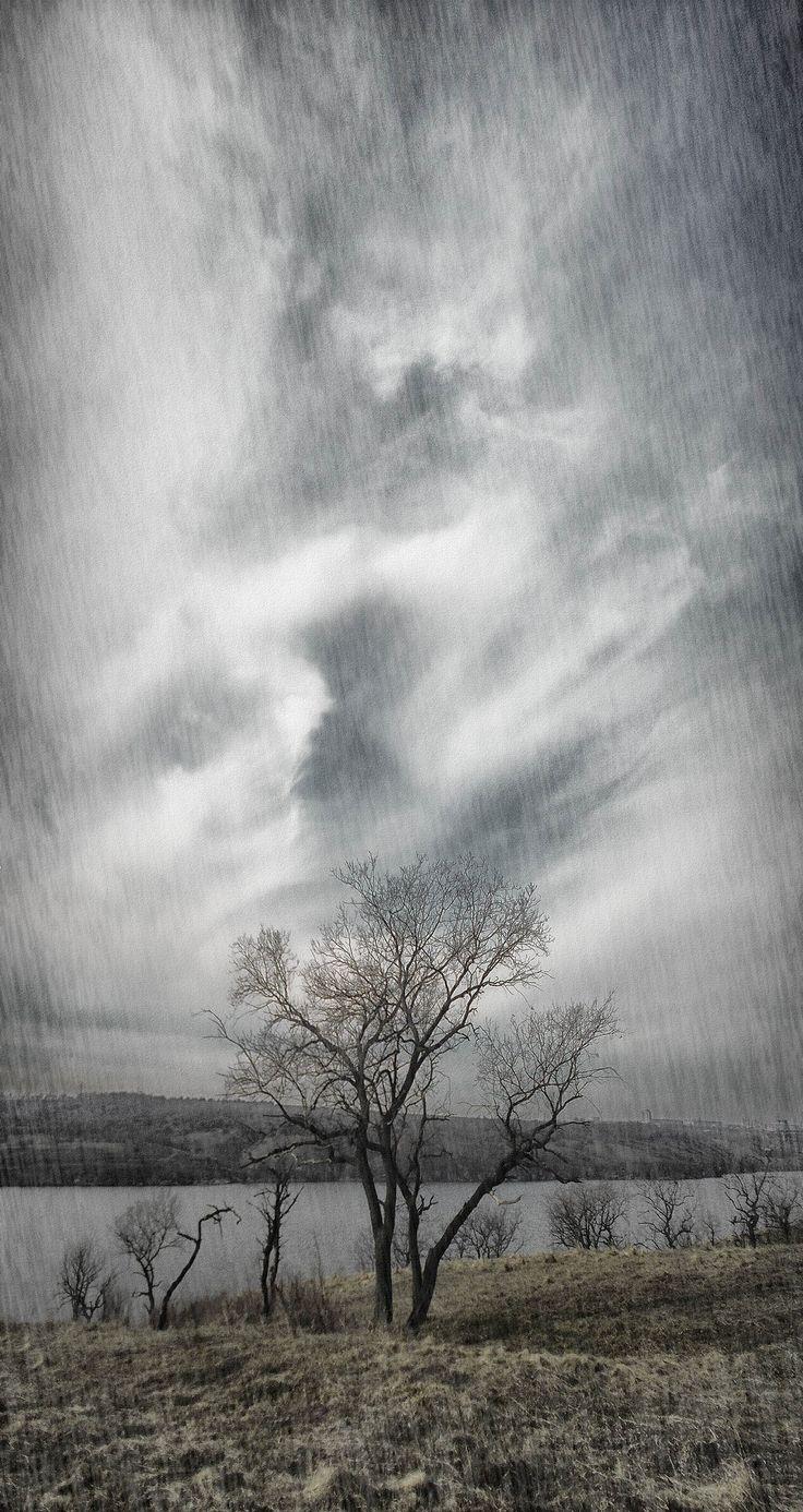 https://flic.kr/p/T8uAaS | Etude #150311DSCN0102 pnr. | Rainy sky. National reserve * Khortytsya *, Ukraine.