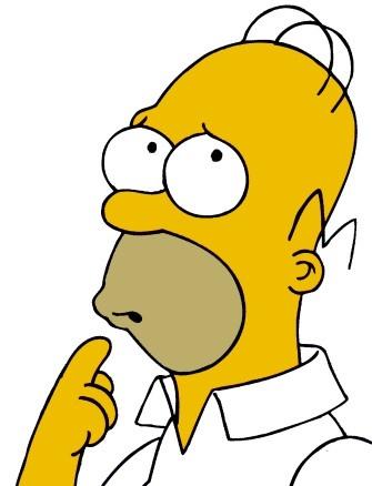Homer flipped