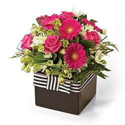 Congratulation flowers and gifts: Princess