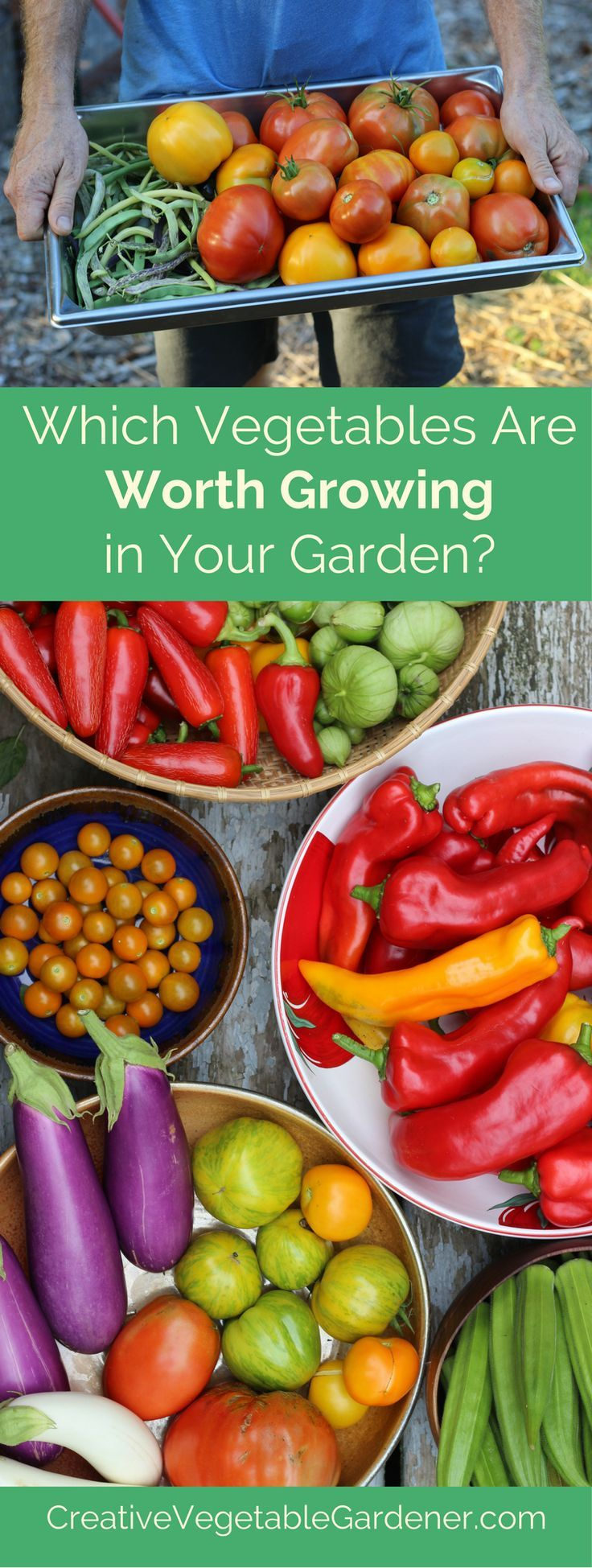 Food garden pictures - Want To Increase Your Garden Harvest Learn This