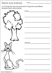 living and non living things worksheets worksheets printable first grade science 4th grade. Black Bedroom Furniture Sets. Home Design Ideas