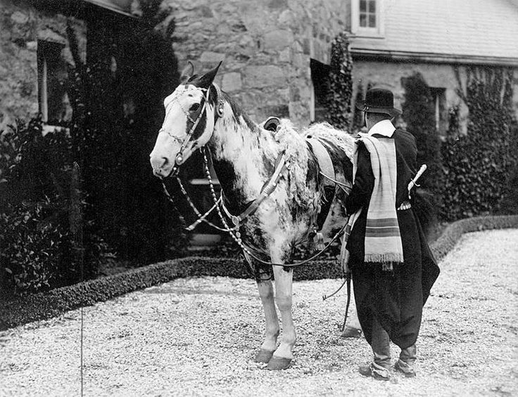 Mancha and owner during their great crossing in 1927.Archivo General de la Nación Argentina 1927 cabalgata en caballos criollos - Gato y Mancha - Wikipedia, la enciclopedia libre