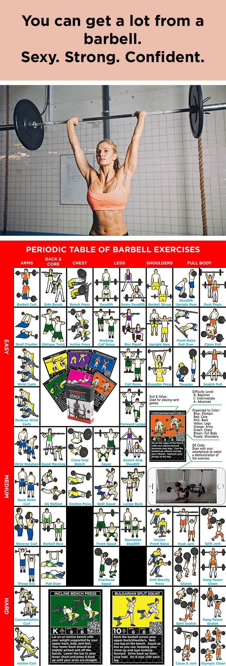1108 best periodic tables images on pinterest periodic table periodic table of barbell exercises gamestrikefo Image collections