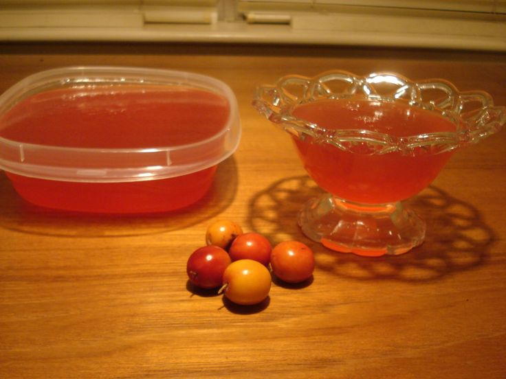 What-a-Plum Jelly and Jam (Mexican Plum)