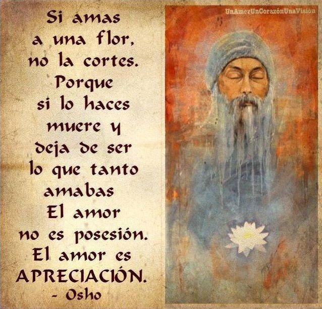 ... Si amas a una flor no la cortes, porque si lo haces muere y deja de ser lo que tanto amabas. El amor no es posesión, el amor es apreciación. Osho.