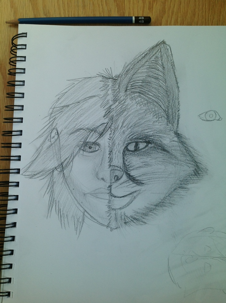 #fox #furries just something i was doing in art class