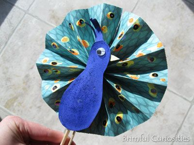 Scrapbook paper peacock fan fold paper and glue to craft for Peacock crafts for adults