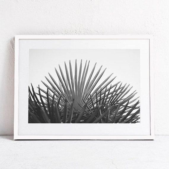 Schwarz&weiß Fotografie - Palm Tree Poster
