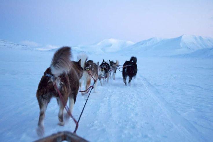 Spitsbergen Hotel, Longyearbyen, Sports d'hiver