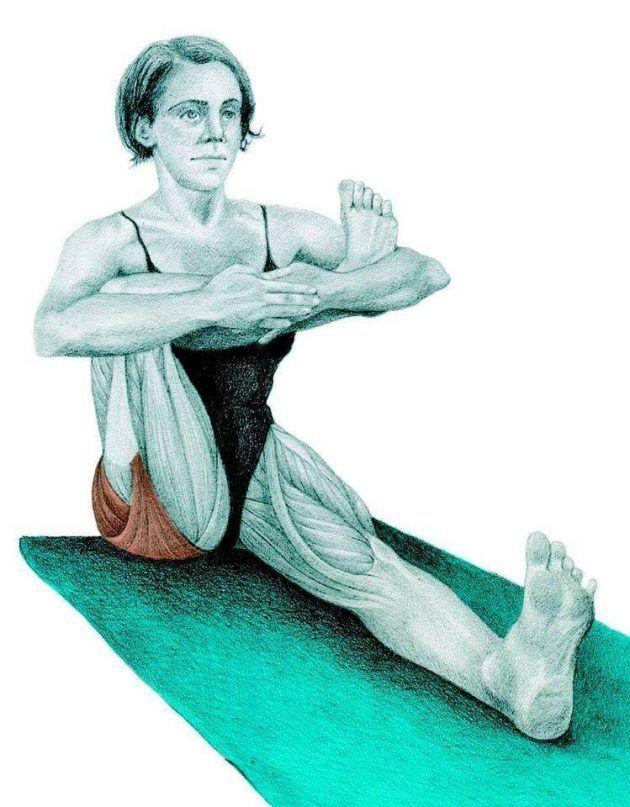 растяжка для мышц ног картинки имеет