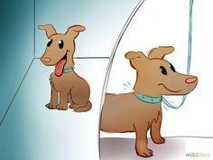 Como entrenar a tu perro a que venga cuando le llamas