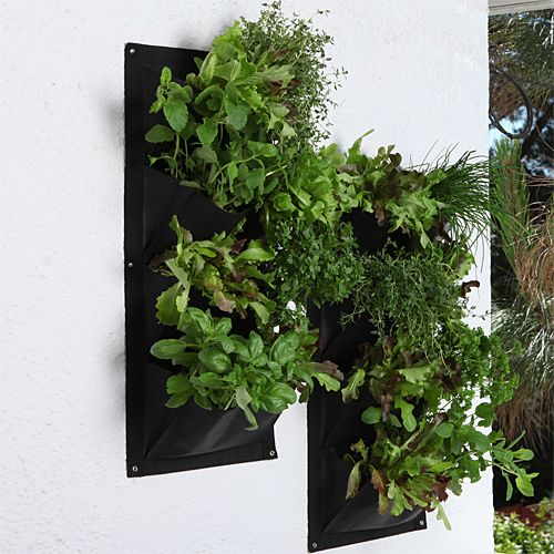 Vertical Wall Planters. Tile over furnace closet door in kitchen idea. So green!