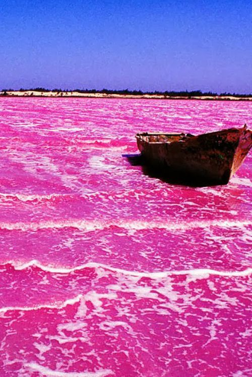 Travel: Lake Hillier Australia