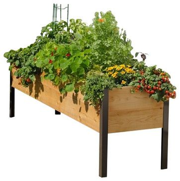 2x8 Elevated Cedar Planter Box traditional-outdoor-pots-and-planters