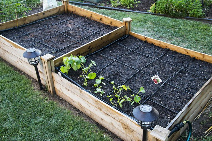 17 Best Images About Drip Irrigation On Pinterest Raised 400 x 300