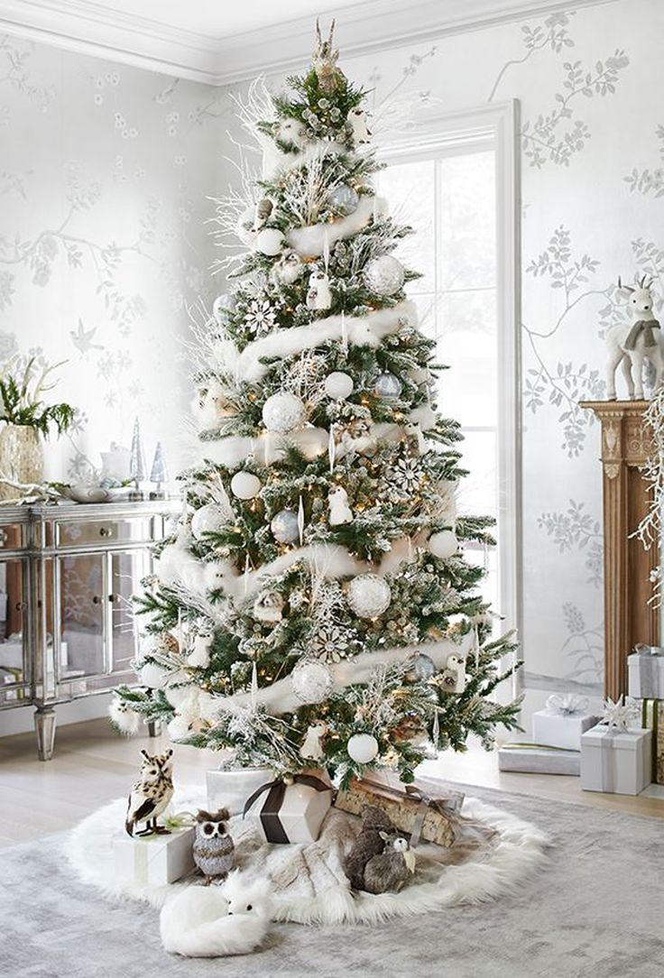 Decorador de arboles de navidad 187 home design 2017 - Want To Know More About Choosing A Christmas Tree Use These Tips And Ideas For Measuring Buying And Bringing Home A Pretty Holiday Tree
