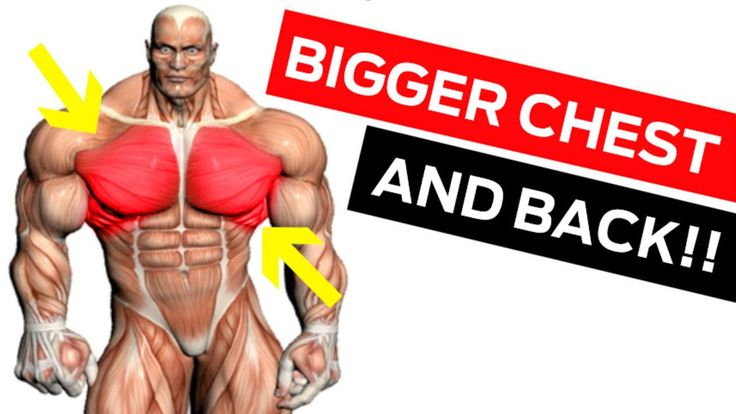 If there are three bodyparts I know how to build it's chest, back and legs. Today's brand new Muscle Camp video is dedicated to building a bigger chest and a...