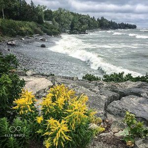 FOUND BEAUTY TODAY... at the #shore. The #wind has been blowing from the east for the past three days creating big #waves at our end of #lake #ontario  I am endlessly mesmerized by the #power of #nature. #getoutside #canada