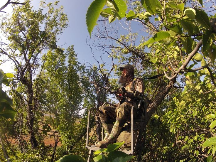 essay using tree Tree climbing is an activity where one moves around in the crown of trees a tree climber use of a rope, helmet, and harness are the minimum requirements to ensure.
