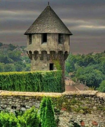 Medieval Tower, Hungary. This is apparently near Visegrad, one of the towns on the tour round the river bend