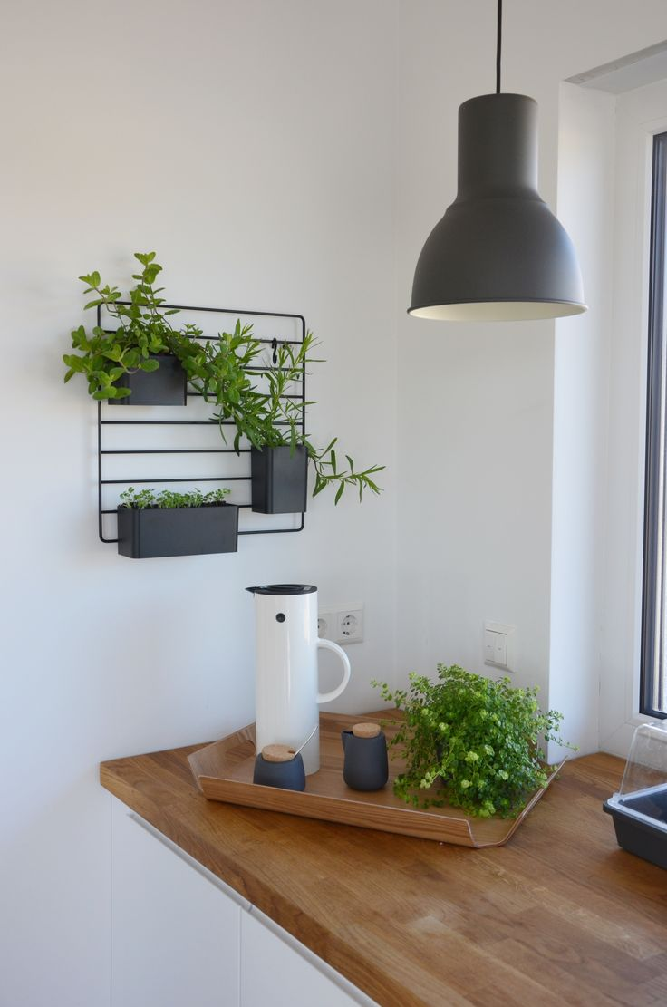 die besten 25 kr uterregal ideen auf pinterest regal. Black Bedroom Furniture Sets. Home Design Ideas