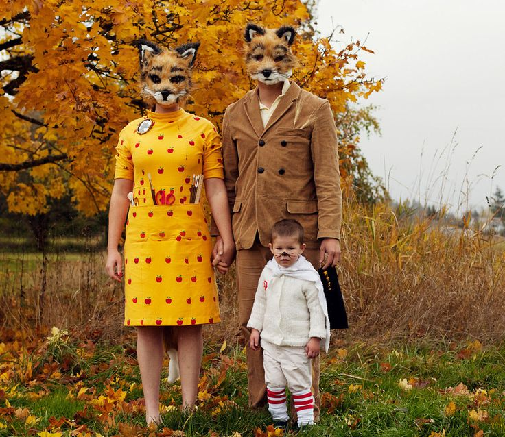Fantastic Mr. Fox Halloween Costume