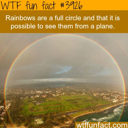 Full Circle rainbow - WTF fun facts