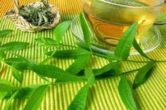 Σύμφωνα με επιστημονικές έρευνες, το βότανο λουίζα , σε συνδυασμό με τα ω-3 λιπαρά οξέα, ενισχύει τη μνήμη και χαρίζει πνευματική διαύγει...