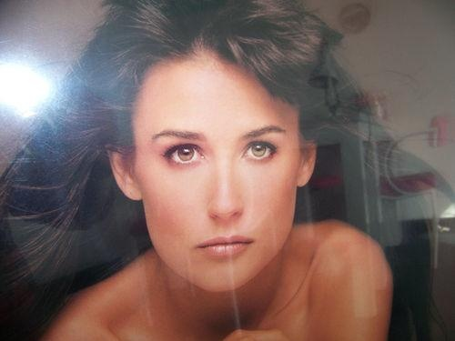 Demi Moore Striptease Movie Poster Plaque Not Just A Thin