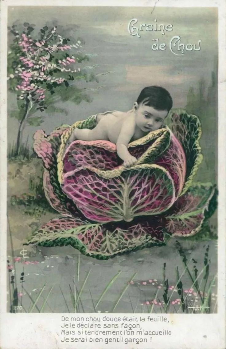 441 best tinted postcards images on pinterest postcards photo