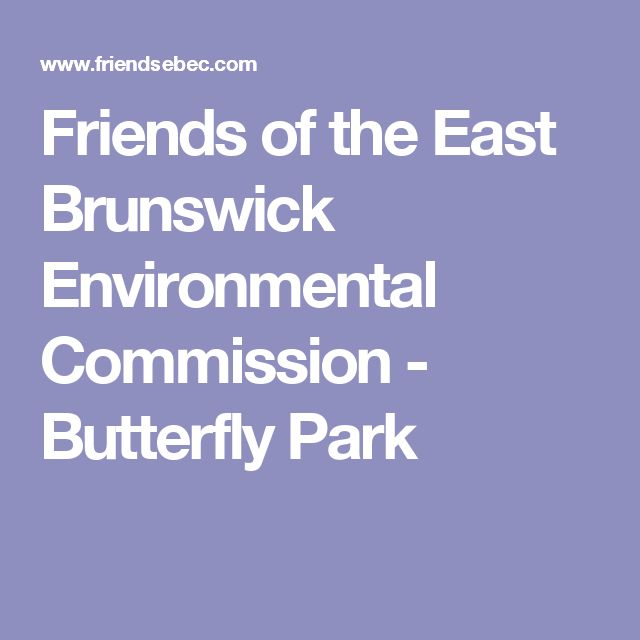 Friends of the East Brunswick Environmental Commission - Butterfly Park