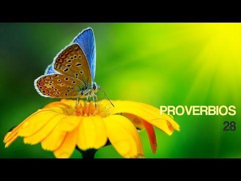 (1) Proverbios 28 TLA - YouTube